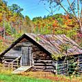 Rural Barn by Savannah Gibbs