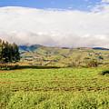 Rural Landscape Tanzania by Marek Poplawski