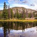 Ruth Lake Trail by Gina Herbert