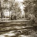 Sabine River Near Big Sandy Texas Photograph Fine Art Print 4105 by M K Miller