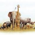 Safari Animals In Africa Composite by Susan Schmitz