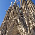 Sagrada Familia In Barcelona by Jaroslav Frank