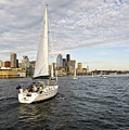 Sail Seattle by Tom Dowd