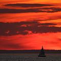Sailboat Mount Sinai New York by Bob Savage