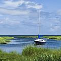 Sailboat Salt Marsh by John Greim