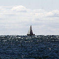 Sailboat by Steve Bell