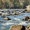 Saluda River Rapids - 2 by Charles Hite