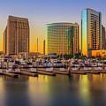 San Diego by Roman Gomez