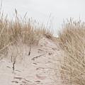 Sand Dune by Tom Gowanlock