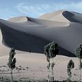 Sand Dunes In The Gobi Desert by Carl Purcell