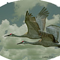 Sandhill Crane Pair by Larry Linton