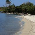 Sanibel Island Lagoon by Rick Lesquier