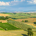 Scenic Tuscany Landscape At Sunset, Val D'orcia, Italy by JR Photography