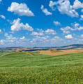 Scenic Tuscany Landscape With Rolling Hills In Val D'orcia, Ital by JR Photography