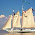 Schooner On Mobile Bay by Mountain Dreams