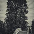 Schwetzingen Castle Park by Duschan Tomic