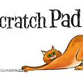Scratchy Cat by Trevor Irvin