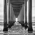 Scripps Pier La Jolla by Cliff Wassmann