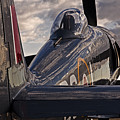 Sea Fury Reflections by Rick Pisio