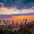 Sea Oats by Larry Waldon