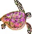 Sea Turtle by Jennifer Thomas