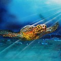 Sea Turtle by Mario Carta