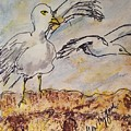 Seagull Salute by Geraldine Myszenski