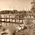 Sepia Waterscape by Brian Wallace