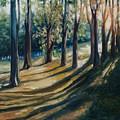 Shadows by Rick Nederlof