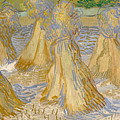 Sheaves Of Wheat by Vincent van Gogh