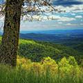 Shenandoah Valley Np by Ronn Orenstein