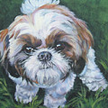 Shih Tzu by Lee Ann Shepard