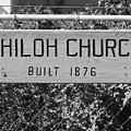 Shiloh Church Sign Birds Landing Ca by Troy Montemayor