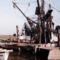 Shrimp Boat  by B L Qualls
