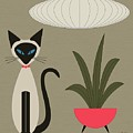 Siamese Cat On Tabletop by Donna Mibus