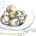 Sketches  by Yana Sadykova