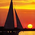 Skipjack At Sunset by Thomas R Fletcher