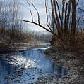 Skippack Blues by Steven J White PWS