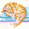 Sleeping Beauty by Debra Hall