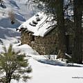 Snow Cabin by Matalyn Gardner