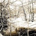 Snow-covered Stream Banks, Pennsylvania by A Gurmankin