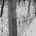 Snow Fence by Lauri Novak