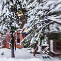 Snow... by Lena Monteiro