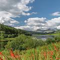 Snowdonia Lake by Adrian Evans