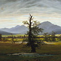 Solitary Tree by Caspar David Friedrich