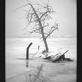 Solitude by Sue Stefanowicz