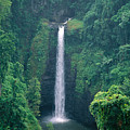 Sopoaga Falls by Kyle Rothenborg - Printscapes