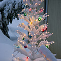 Sparkly Tree by Jim And Emily Bush