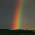 Spectrum by Julian Perry