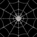 Spider No.2 by Abdulaziz Butaiban
